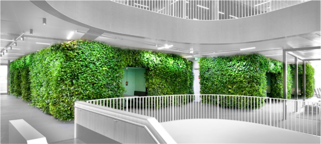NextGen-Living-Wall-219-1024x460
