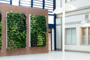 GRO_W_nextgen_-_living-wall-59-1030x425