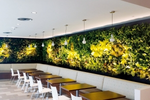 NEXTGEN-Living-Wall-05