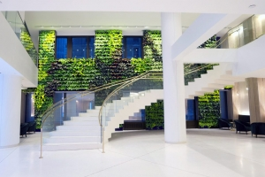 NEXTGEN-Living-Wall-66-1024x634-1024x634